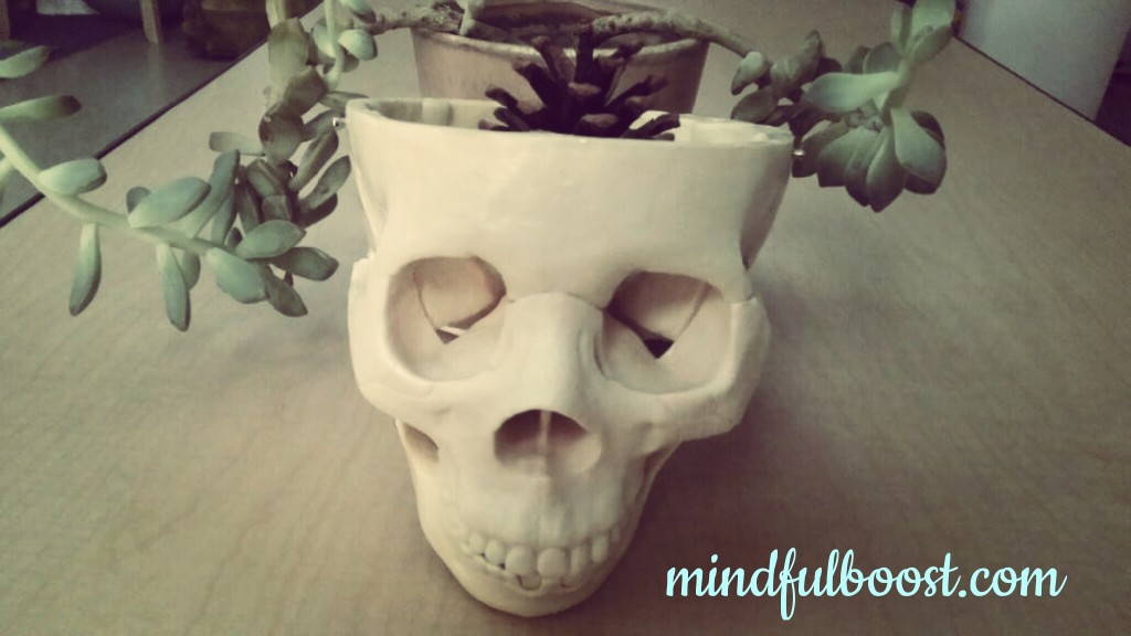 My interpretation of our pineal gland. (because I had a skull laying around)